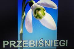 IMG_20210317_142751